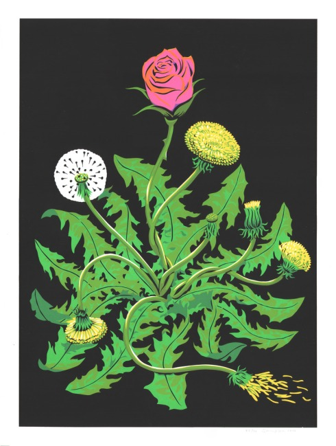 RoseWeed