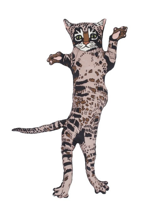 Cat_Front